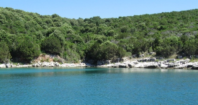 Croatian Adriatic Branka Valcic